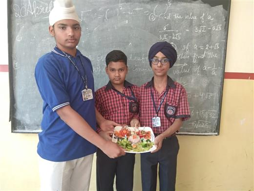 Salad Making Activity | AKSIPS 65 Chandigarh